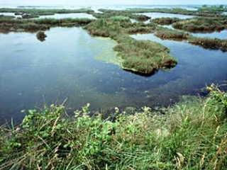 ポー川の画像 p1_2