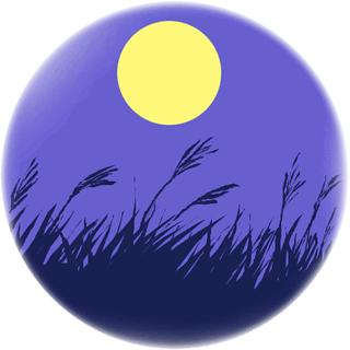 月見の画像 p1_8